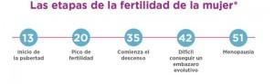 etapas fertilidad