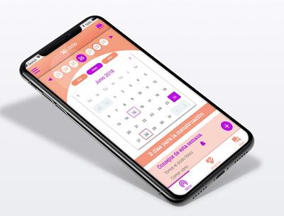 app embarazo mini